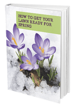 spring-lawncare-ebook